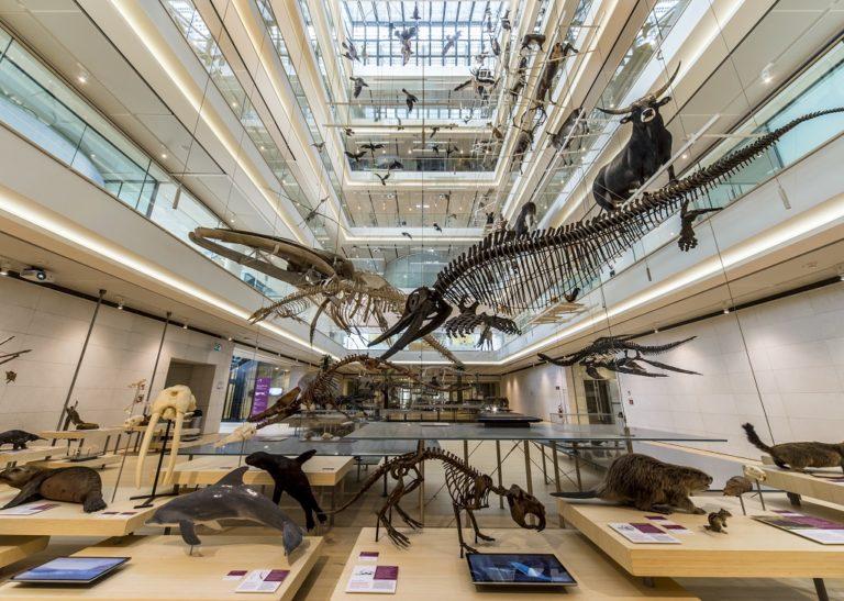 I migliori Musei della Scienza: imperdibili e sparsi per il mondo