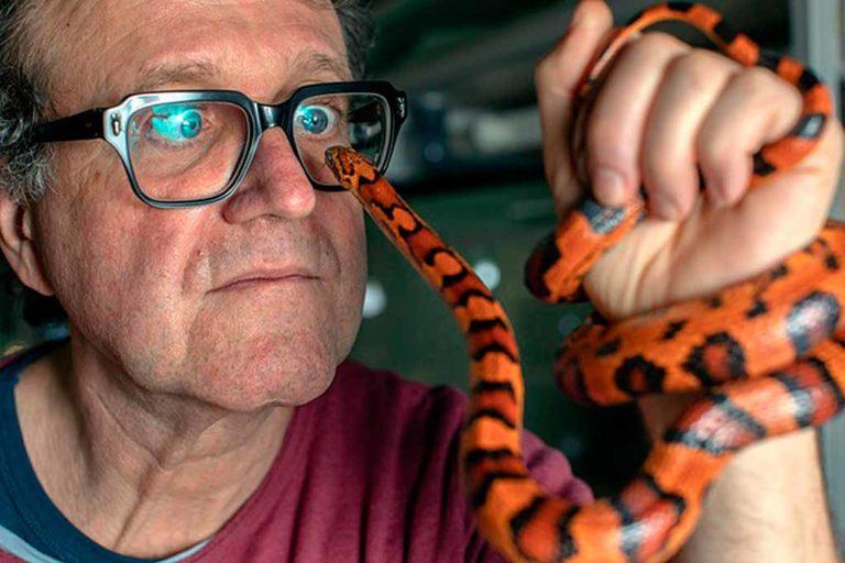 Il Dottore dei Serpenti