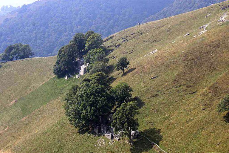 Svizzera. Mendrisio e la sua terra. Vino, natura, arte, archistar: il Ticino che sorprende