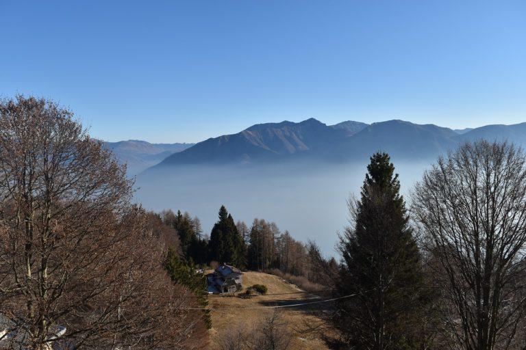 Nel Ticino è tempo di castagne